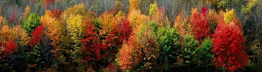 fall daylight savings time